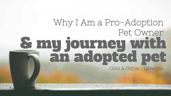 Why I Am a Pro-Adoption Pet Owner